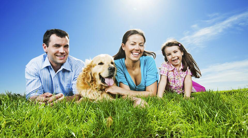 Famiglia - Animali Domestici